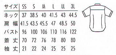 【全2色】半袖ニットシャツ(アルティマ素材・兼用)※廃番・返品不可※ サイズ詳細